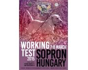 Working test Sopron 7-8 March 2015, Hungary