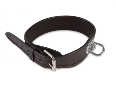 Blood tracking leather collar 40 cm brown