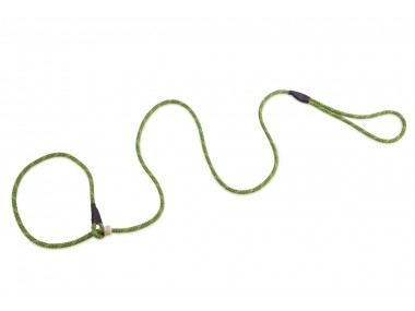Firedog Moxon leash Profi 6 mm 130 cm light green/black
