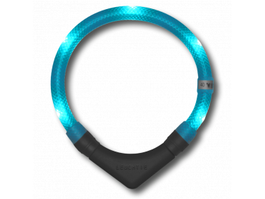 LED Light dog collar LEUCHTIE Plus turquoise 37,5 cm